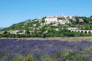 #Sault : een dorpje dat uitkijkt over de omringende lavendelvelden in de #Provence ! Kijk voor meer informatie over deze, en andere steden en dorpen in Zuid-Frankrijk op www.zonnigzuidfrankrijk.nl !