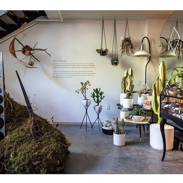 We love the concept behind @wecameinpeace's wandering botanical shop. #visualmerchandising #retail #popup #plants #trends