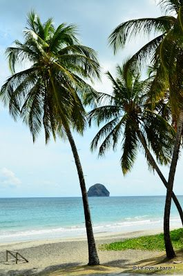 Martinique - plage du Diamant RePinned by : www.powercouplelife.com