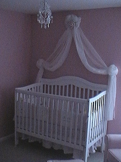 Princess Themed Baby Bedroom: 110 Best Princess Theme Baby Nurseries Images On Pinterest
