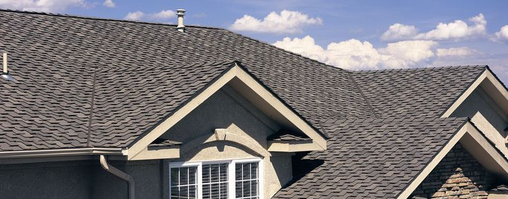 WHAT TYPE OF ROOF SHINGLES SHOULD YOU BUY AND HOW TO MAINTAIN YOUR ROOF #BestMyNest