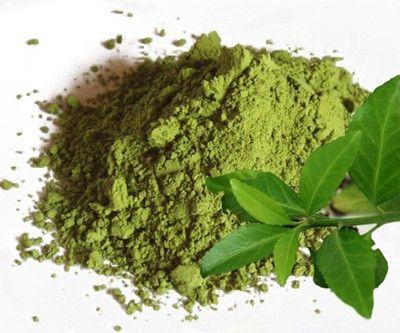 экстракт зеленого чая для похудения инструкция