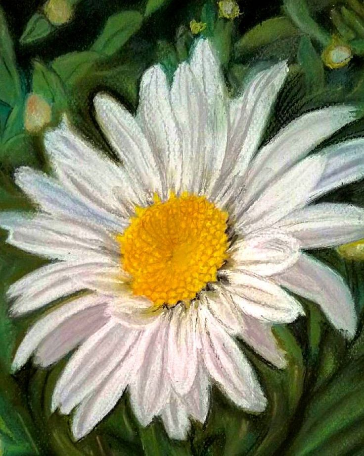 flower painted by my mother #artistic #flower #margarita #nature #pintura #spring #arte #cuadro #picture