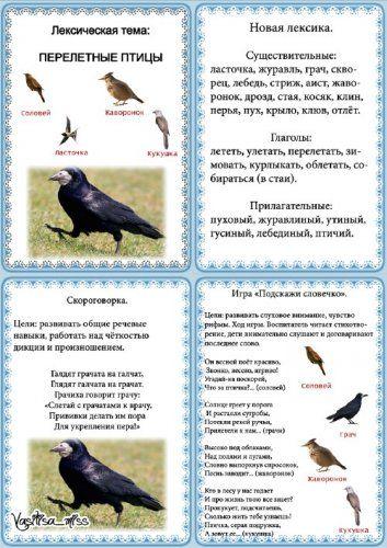 Лексическая тема - Перелётные птицы