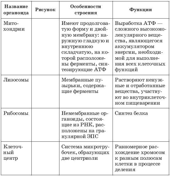 Готовые домашние задания по математике лысенко