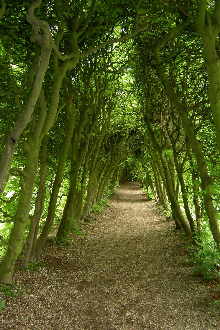 De Groene Bedstee near Arnhem- the Netherlands