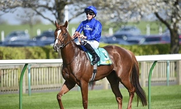 Craven stakes betting tips sports betting vote supreme court