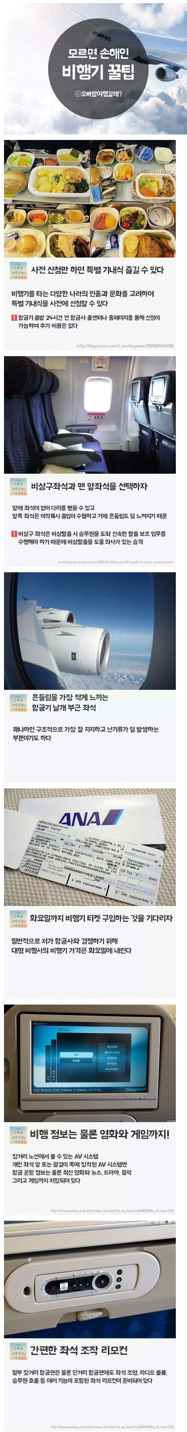 이슈인 - 비행기 꿀팁