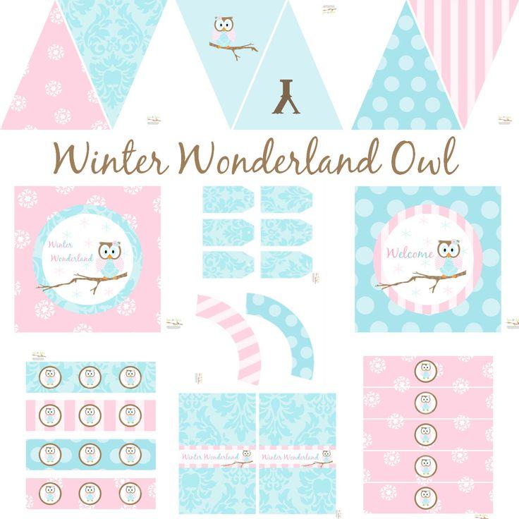 Winter Wonderland Owl Birthday Party, Owl Baby Shower, Owl Birthday Decorations, Owl Baby Shower Decorations, Owl Party Decorations by BeeAndDaisy on Etsy https://www.etsy.com/listing/87450897/winter-wonderland-owl-birthday-party-owl