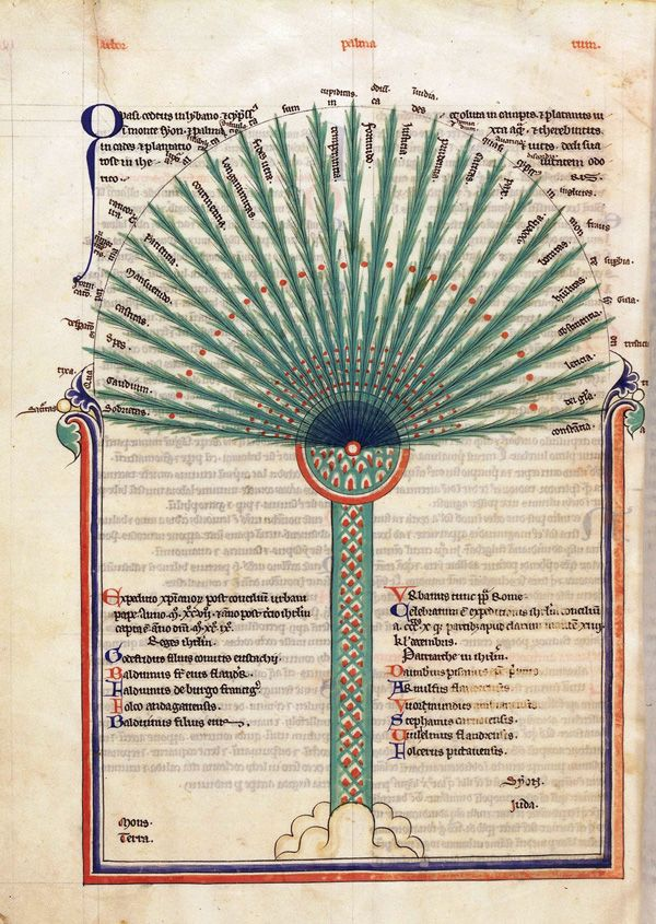 Tree of virtues, ca. 1250 from the 'Liber floridus (Book of Flowers), an encyclopedia complied between the years 1090 and 1120 by Lambert, a canon of the church of Our Lady in Saint-Omer; the work gathers extracts from 192 different texts and manuscripts to portray a universal history or chronological record of the most significant events up to the year 1119. This mystical palm tree, also known as the 'palm of the church,' depicts a set of virtues (fronds) sprouting from a central bulb.