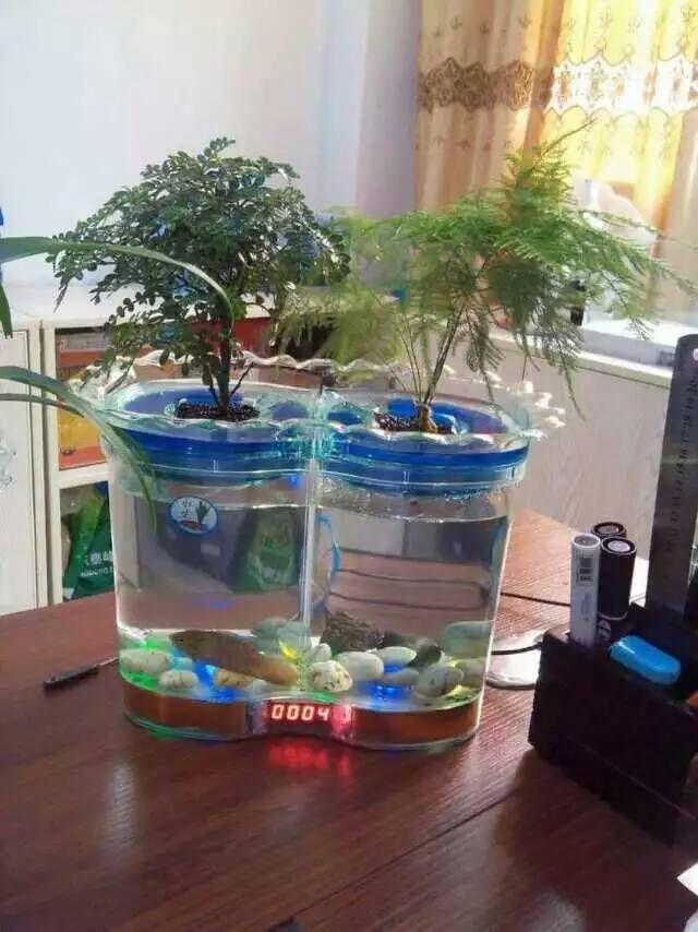 Cheap plant starting, Buy Quality plants allergies directly from China tank price Suppliers: Free Ship Mini LED Desktop Clock Timer Aquafarm self cleaning fish tank indoor kitchen herb garden aquaponics gro