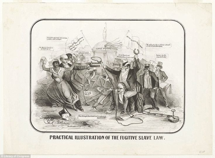 A satirical cartoon shows the antagonism between Northern abolitionists on the one hand, a...