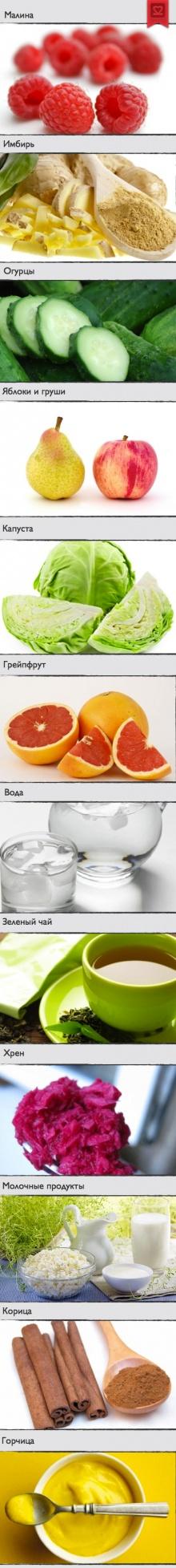 TOP 12 продуктов, сжигающих жиры и регулирующих обмен веществ