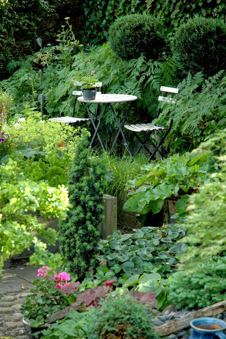 327 best plants woods u0026 paths images on pinterest landscaping