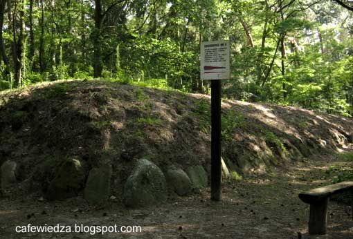 Słonowice - Kujawy megalithic burial, Poland