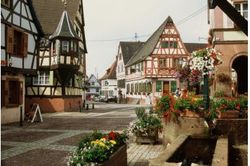 Oberbronn, Bas-Rhin, France.  Family roots here.