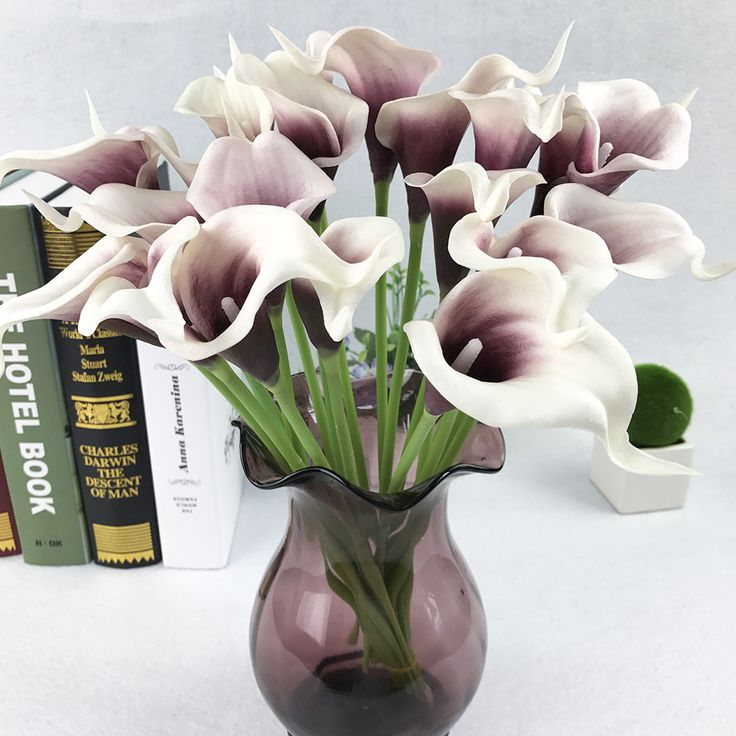 Price: $1.50 Like and Share if you want this     Get it here ---> https://www.yamidoo.com/apricot-1pcs-artificial-flowers-pu-real-touch-9colors-mini-calla-lily-for-wedding-decoration-party-supplies/    #accessories