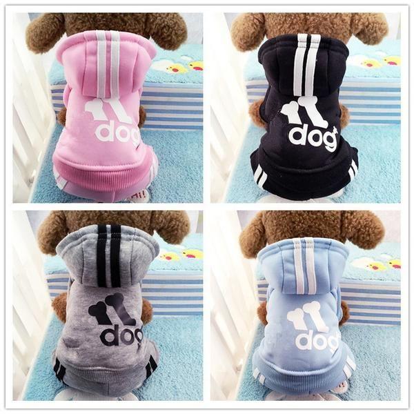 Sport Dog's Hoodie