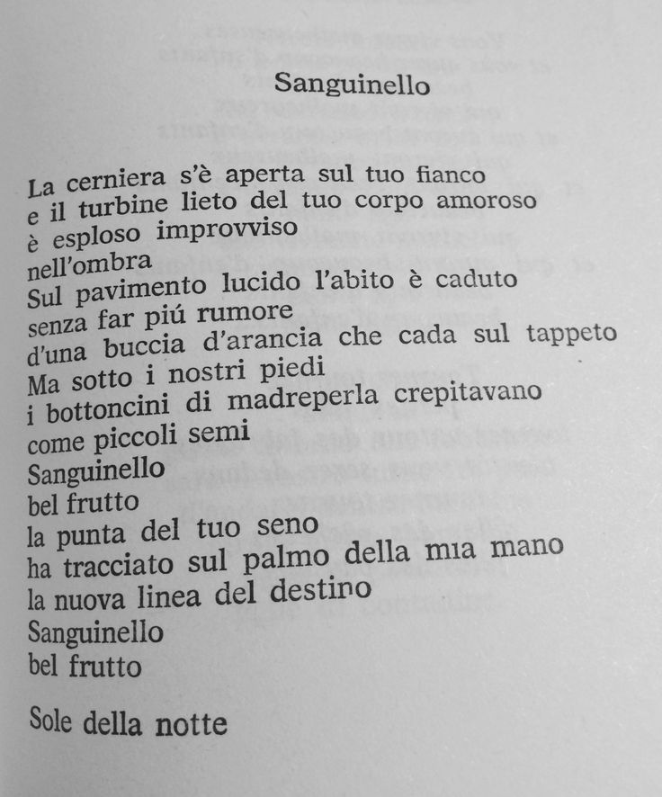 74 best poesie images on pinterest - Poesia specchio quasimodo ...