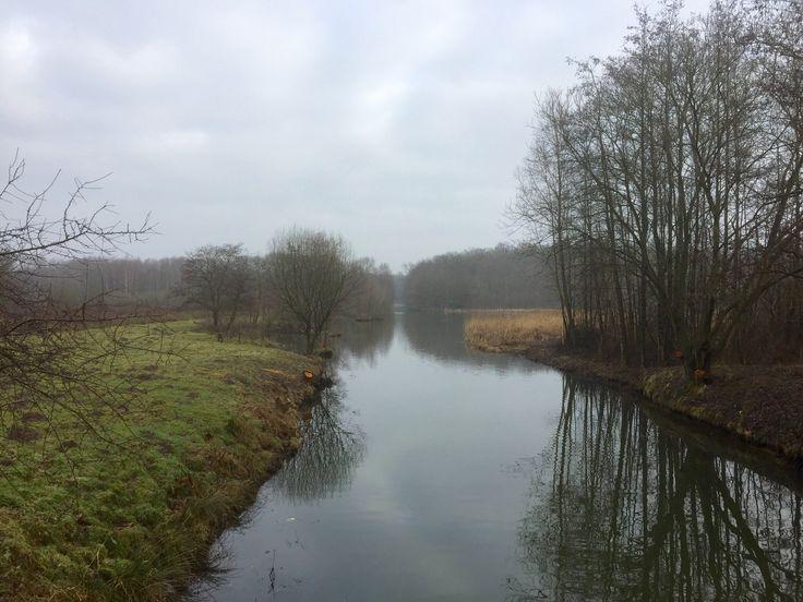 2017-02-04 Hengforden in natuurgebied 't Nijendal is een nat gebied dat vroeger behoorde tot de woeste gronden van Salland