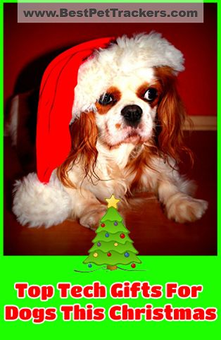 Click http://bestpettrackers.com/top-tech-gifts-your-dog-will-be-howling-for-this-christmas/. It's important to remember the furry friends we love at Christmas. Here is a list of 10 Top Tech Gifts that your dog -- or someone else's -- will love this Christmas! Get the latest info & the best price at http://BestPetTrackers.com.