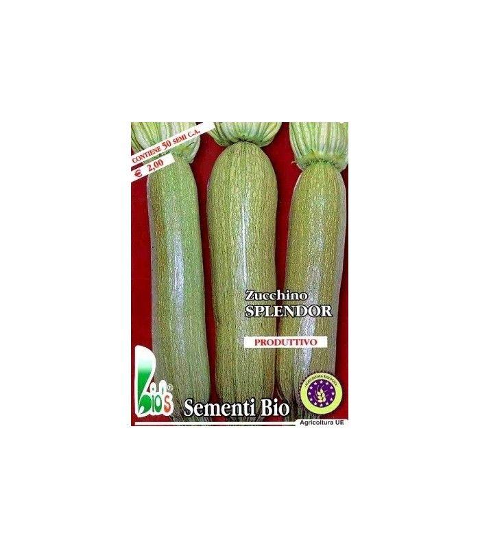calabacin splendor (semillas ecológicas)