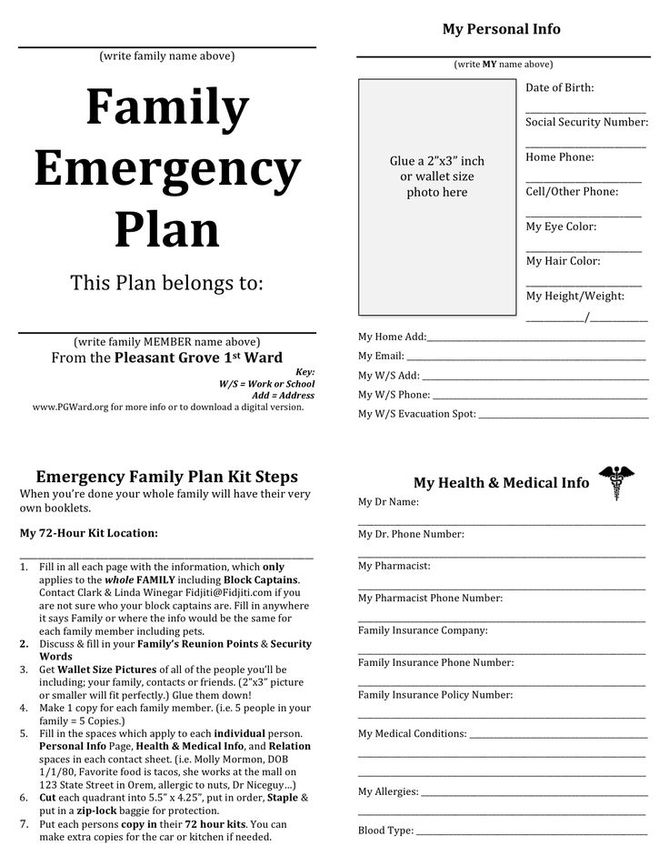 Family Emergency plan - printable documents for your emergency binders