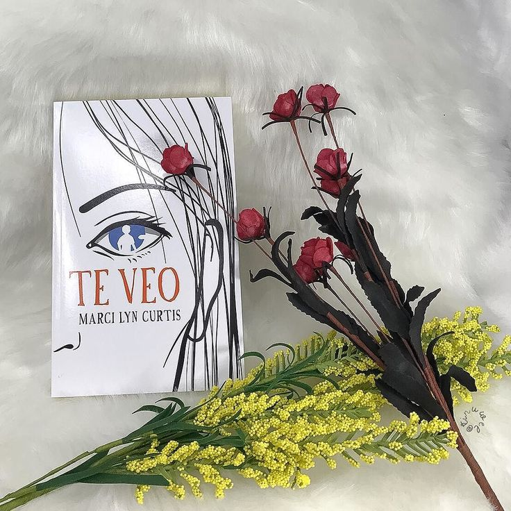 Resultado de imagen para libro de Te veo (fotos de bookstagram)