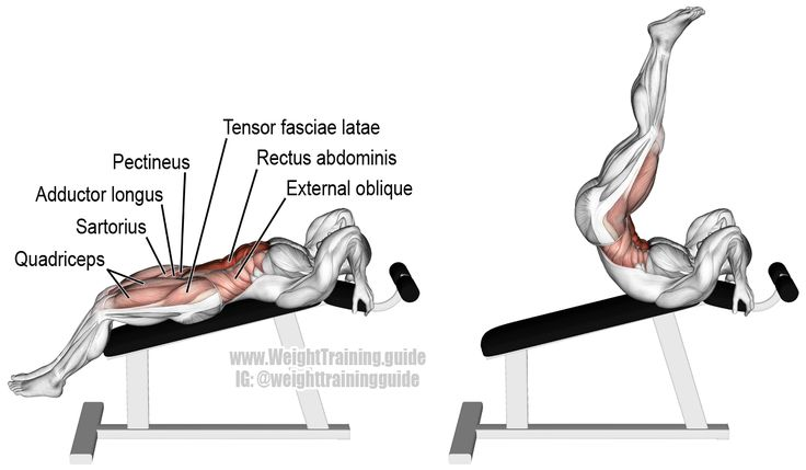 Incline straight leg and hip raise. A compound exercise. Target muscle: Rectus Abdominis. Synergistic muscles: Obliques, Iliopsoas, Tensor Fasciae Latae, Sartorius, Pectineus, Adductor Longus, Adductor Brevis, and Quadriceps.