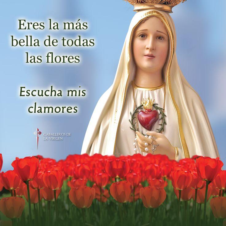 16 Best Kristanna Loken Octubre Images On Pinterest: 17 Best Images About Virgen De Fátima Imágenes On
