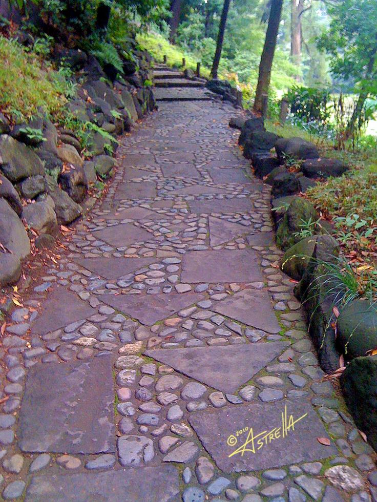 Outdoor Pathways 78 best patios - pavers - walkways images on pinterest | gardening