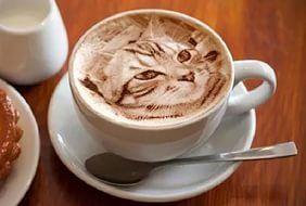БЕШАМЕЛЬ: Как приготовить идеальный кофе: 7 секретов от бариста.