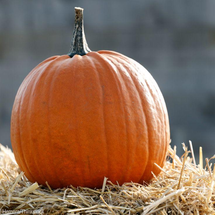 6 Host Tips for a Fall Harvest Party - Photo by Hemera/Thinkstock (HobbyFarms.com) #fall #harvest #party