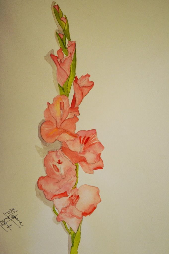 ... Gladiolus tattoo Daisy tattoo designs and Gladiolus flower tattoos