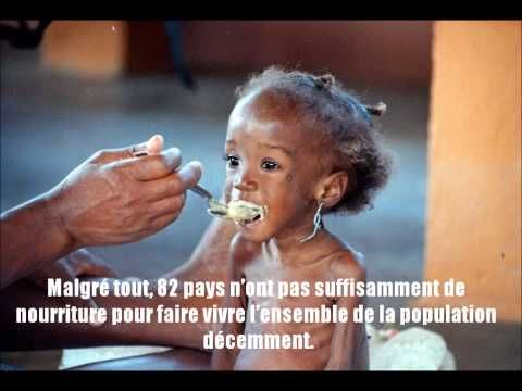 ▶ campagne de sensibilisation au gaspillage alimentaire - YouTube