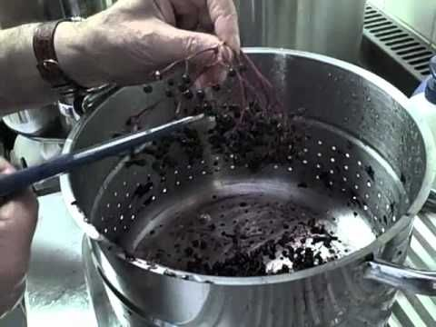 How to Make Elderberry Jelly using a Steam Juicer - YouTube