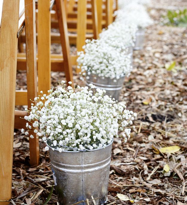 Add some baby's breath to give rustic charm to a wedding bouquet.