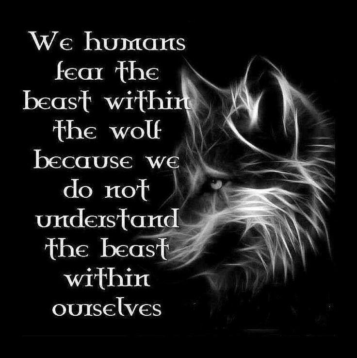 Best 25+ Howling Wolf Tattoo Ideas On Pinterest