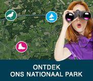 Willkommen auf der website des Nationalparks De Maasduinen