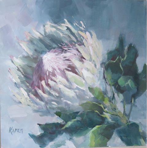 KAREN'S CANVAS: Protea season