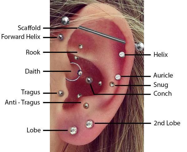Top Ear Piercings Top Ear Piercing Ear Piercing Diagram Ear Piercings Chart