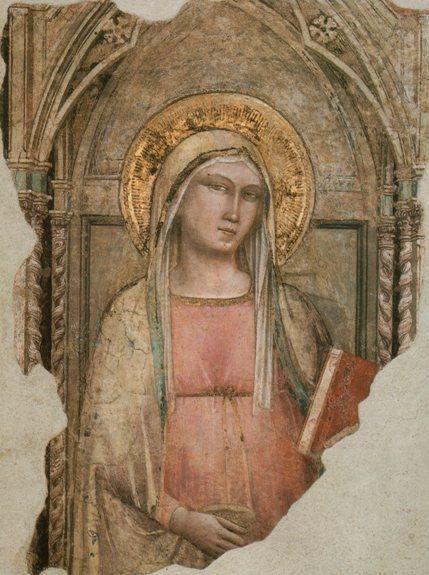 Taddeo Gaddi ~ Madonna del Parto, c.1330s-50s (fresco)