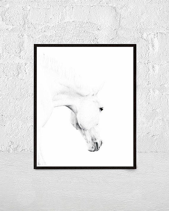 Horse Print, Horse Photo, Horse Photography, Horse Art, White Horse, Horse Printable Art, Black And White Prints, nursery animal print