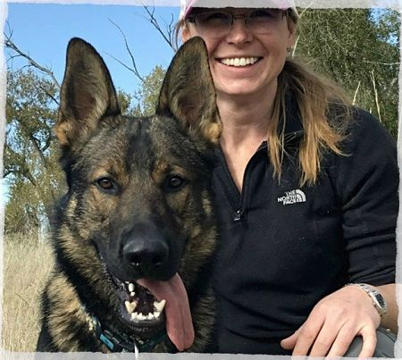 German Shepherd Breeders | Search and Rescue Dogs | Czech Border Patrol German Lines | DDR German Shepherds | Narcotic Dogs | Police Dogs | Protection Dogs | Family Dogs