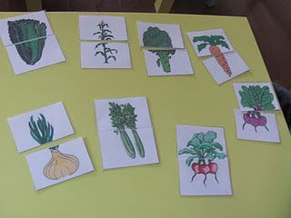tops and bottoms activity for plant theme