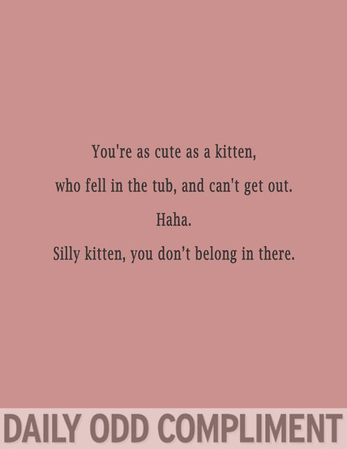 Daily Odd Compliment. This one actually made me laugh..