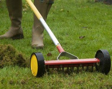 Meer dan 1000 idee n over entretien pelouse op pinterest entretien gazon g - Scarificateur pour pelouse ...