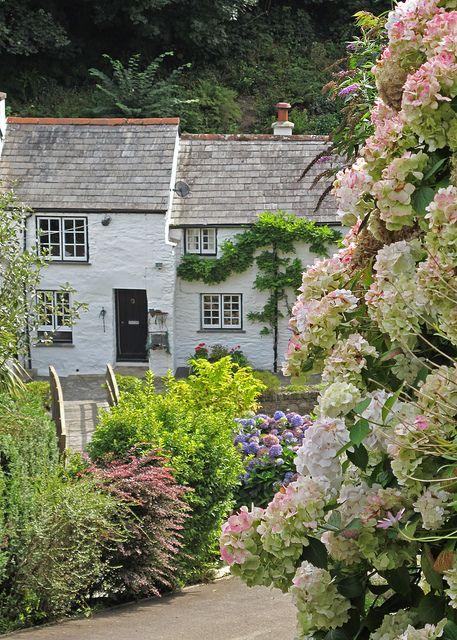 Pretty cottages in Boscastle http://www.flickr.com/photos/patsyjenningsart/4961437814/#