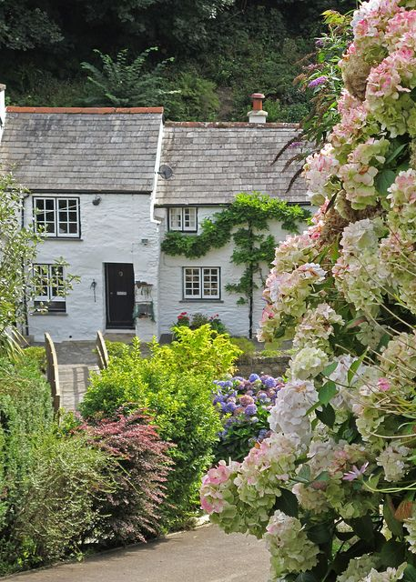 Pretty cottages in Boscastle http://www.flickr.com/photos/patsyjenningsart/4961437814/#