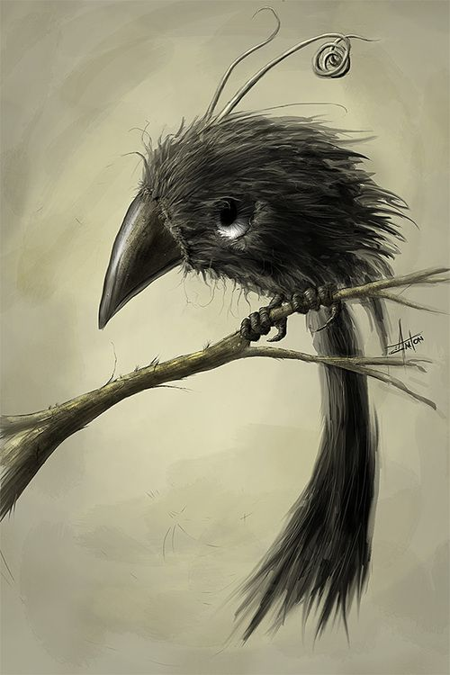 I am in love with this bird...anyone know if you can buy a print?